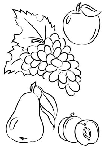 autumn fruits omalovnka free printable coloring pages