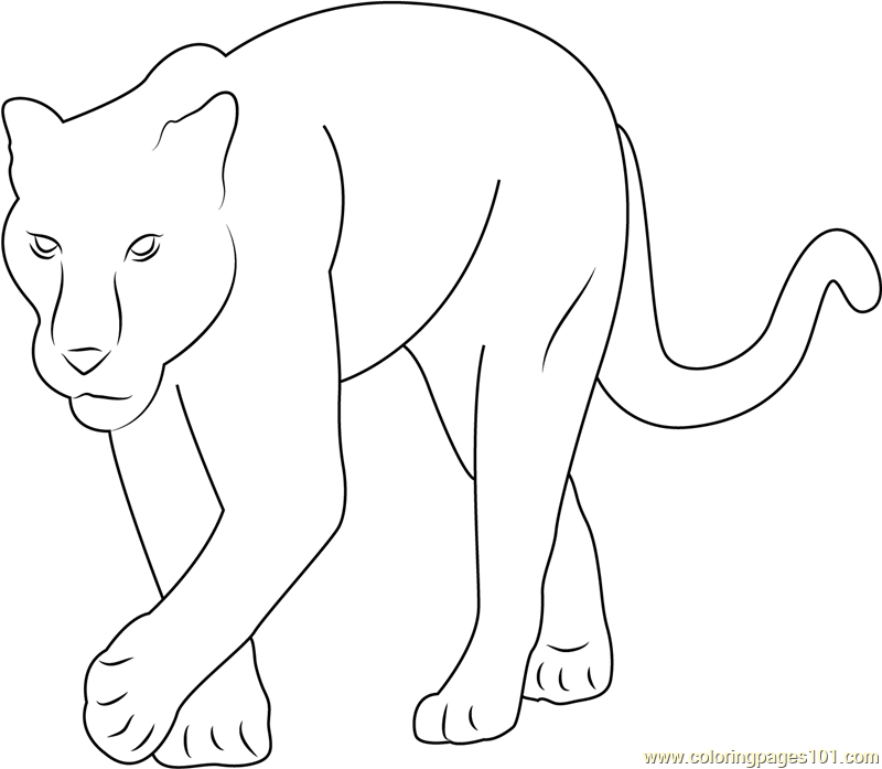 ba panther coloring page free panther coloring pages
