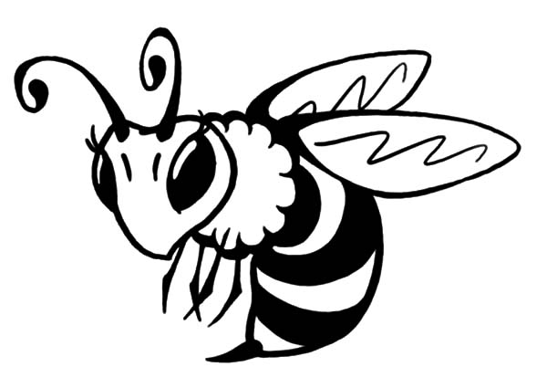 beautiful honey bee coloring pages coloring sky