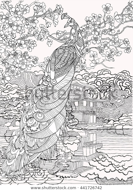 beautiful peacock on background oriental landscapecoloring