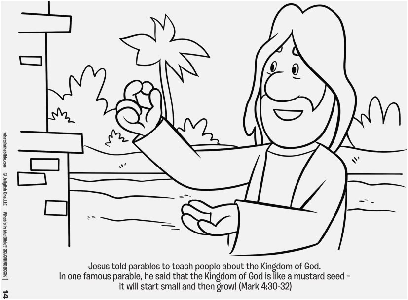 bible with coloring pages concept what s in the bible