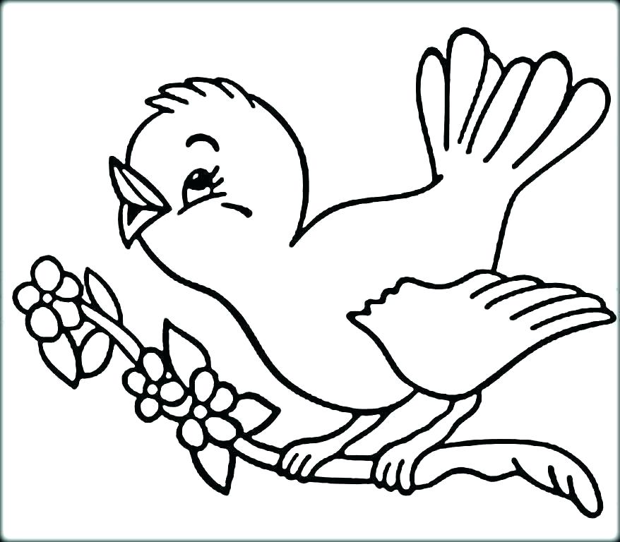 Birds Coloring Pages Picture Whitesbelfast