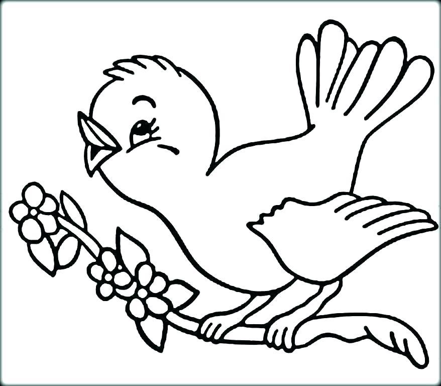 bird coloring page mudanzasjtrco