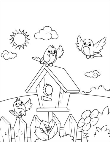 birds near a birdhouse coloring page free printable