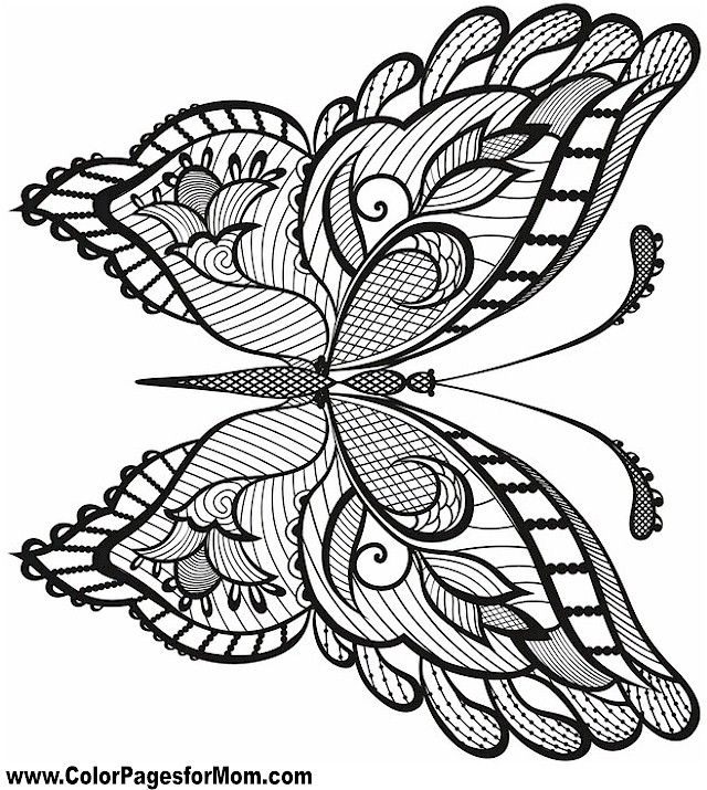 butterfly design coloring pages