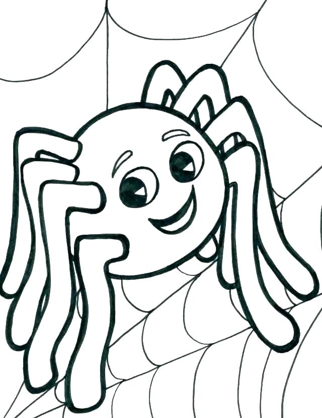 camel spider coloring pages interesantecosmetice