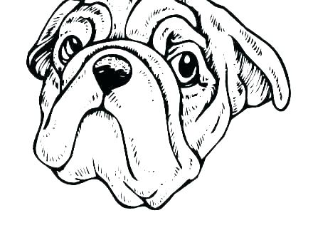 cat and dog coloring pages free dogs hair zamerpro