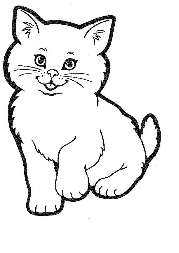 cat color page kitty cat coloring pages free printable