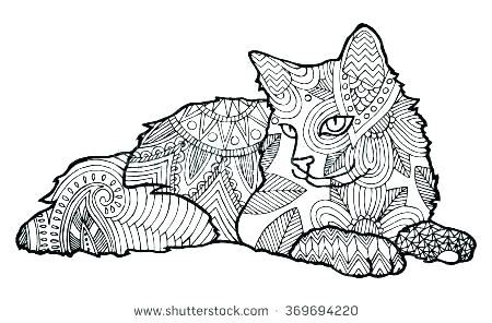 cat coloring book pages lazyfortress