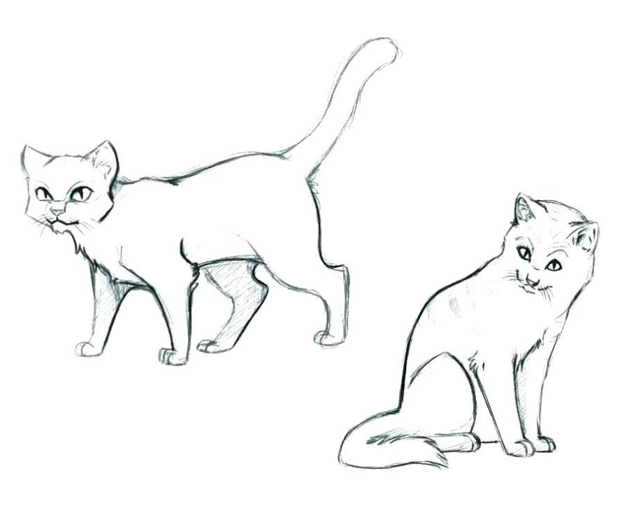 cat pictures coloring pages cantrallco