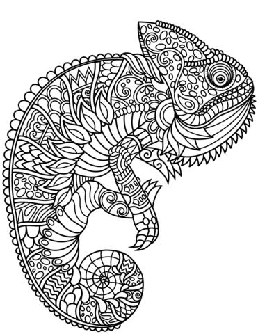 chameleon zentangle omalovnka free printable coloring pages
