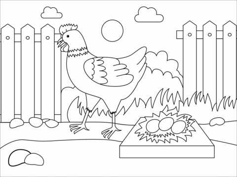 chicken coloring page free printable coloring pages