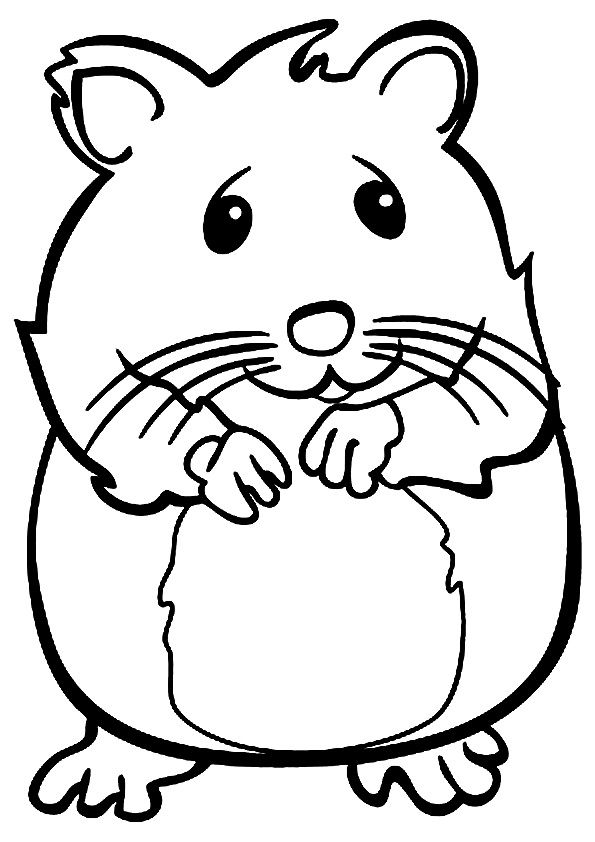 click share this story on facebook hamster haustiere und