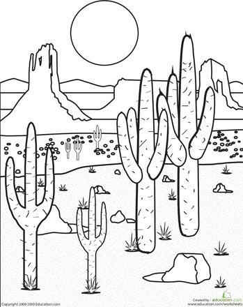 color the desert landscape art landscape ideas desert