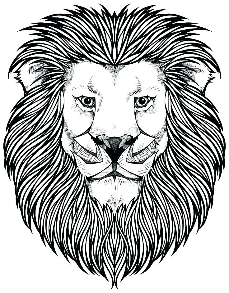 coloring page of a lion in the lions den pages free mountain