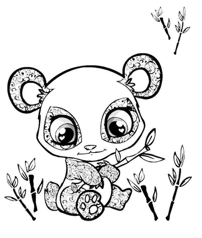 coloring pages 4 to cute animals 49 best super cute animal