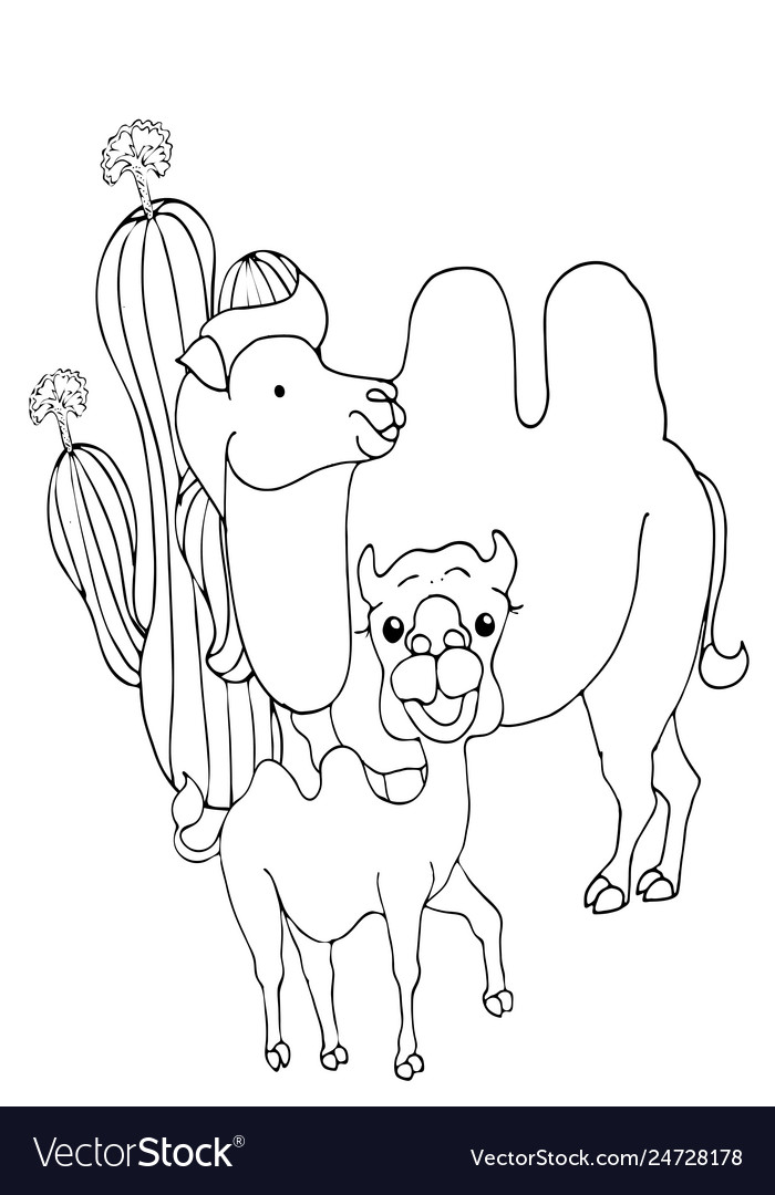 coloring pages animals cute camel stands and