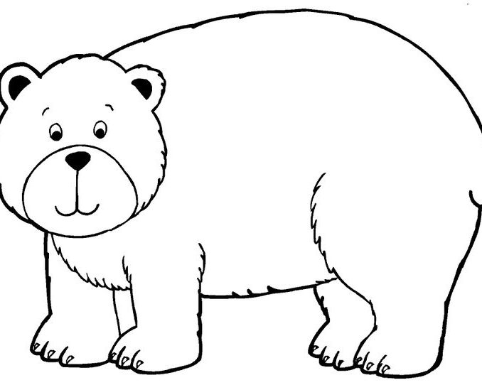 coloring pages bear