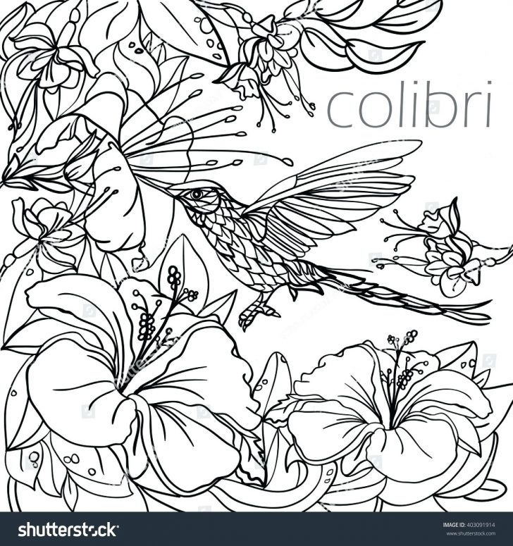 coloring pages birds and flowers coloring pages realistic