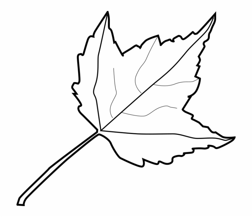 coloring pages color pages of leaves coloring page fall