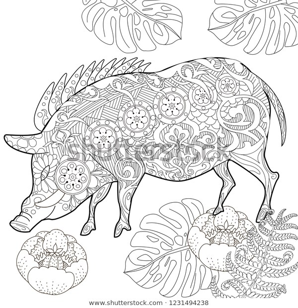 coloring pages coloring book adults cute stock vektorgrafik