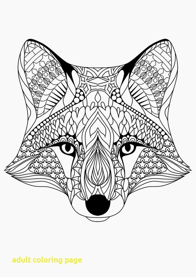 coloring pages for adults fox