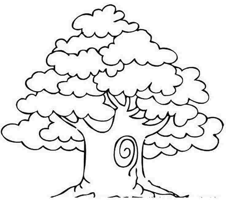 coloring pages for trees trees coloring pages download and