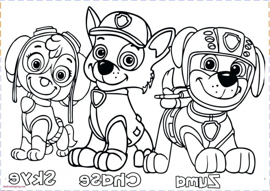 coloring pages ideas 99 remarkable paw patrol coloring
