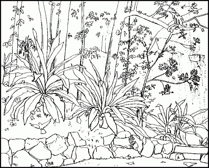 coloring pages nature scenes at getdrawings free for