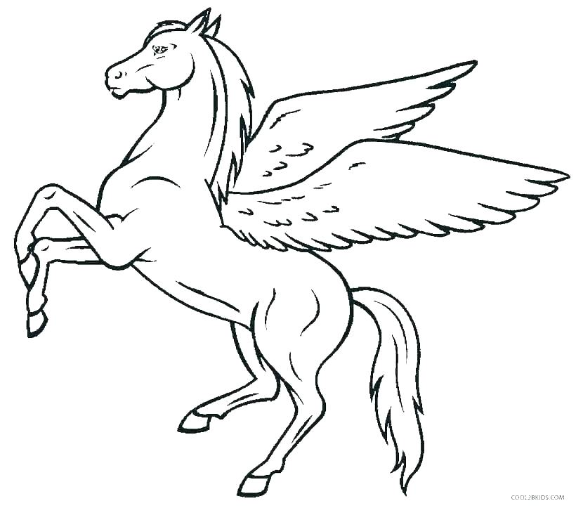 coloring pages of horses lawyersforcaraccidents