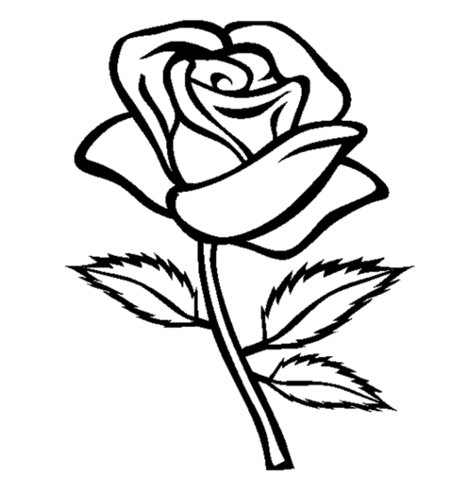 coloring pages of rose