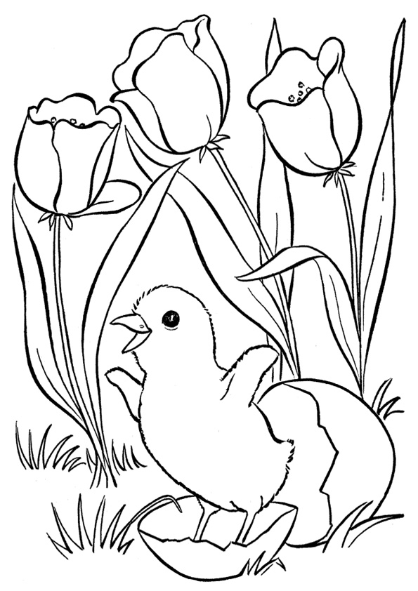 coloring pages printable spring coloring picture