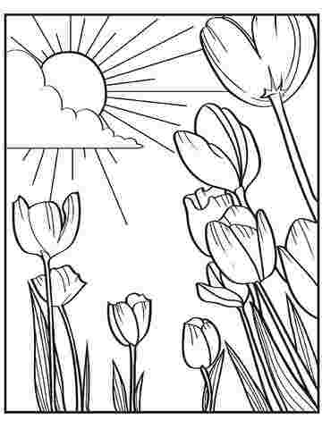 coloring pages printouts spring printable spring coloring