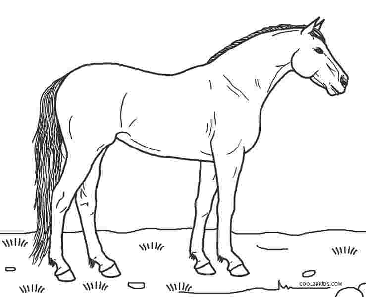 colouring pages for horses horse coloring pages