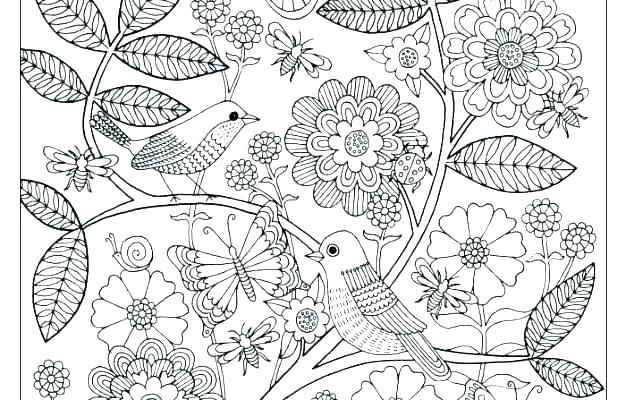 colouring pages garden pusat hobi