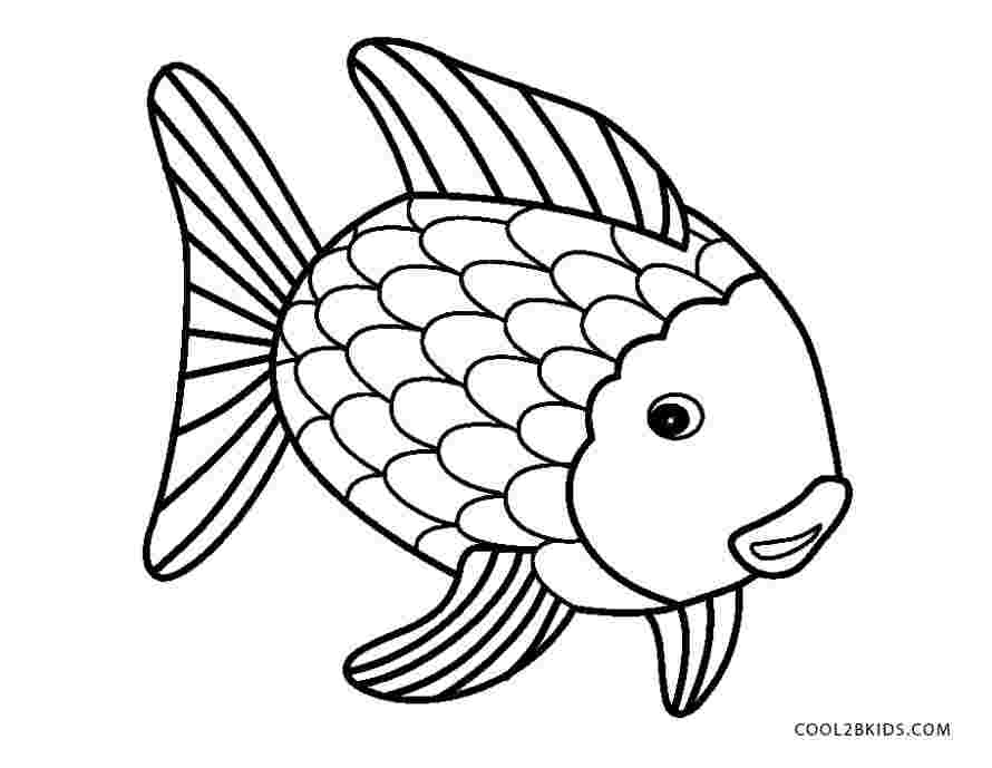 colouring pages rainbow fish huangfei