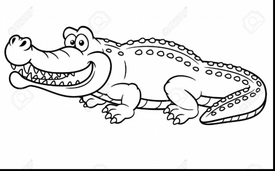 croc coloring pages at getdrawings free for personal