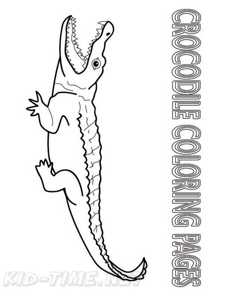 crocodile coloring book page free coloring book pages
