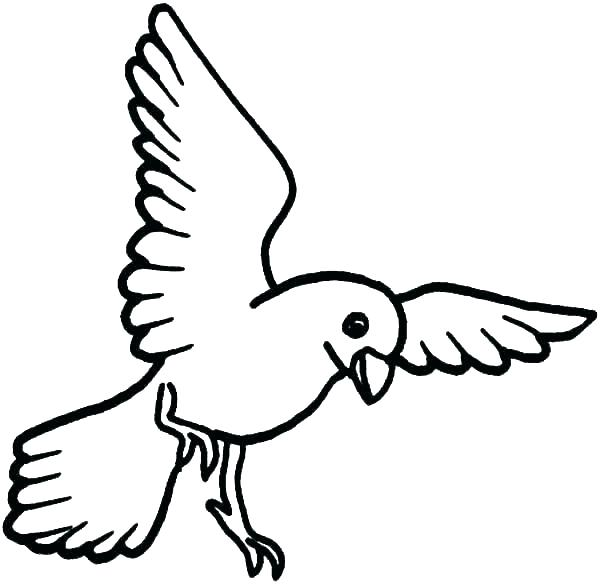 cute bird coloring pages zen coloring book amonkey