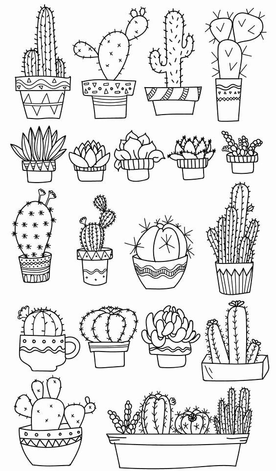 cute cactus coloring page luxury cactus coloring page
