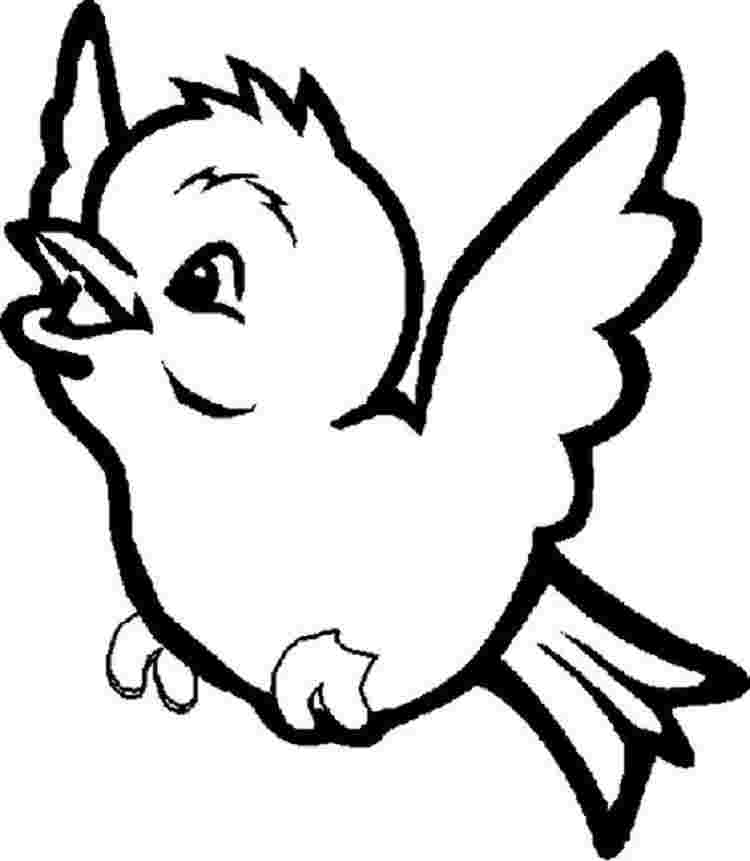 cute coloring pages birds cute bird coloring pages