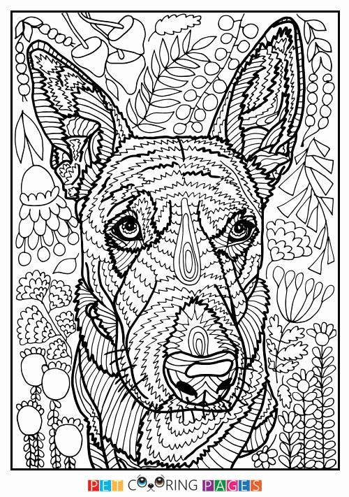 dog adult coloring books best of 432 best images about cats