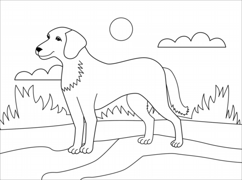 dog coloring page free printable coloring pages