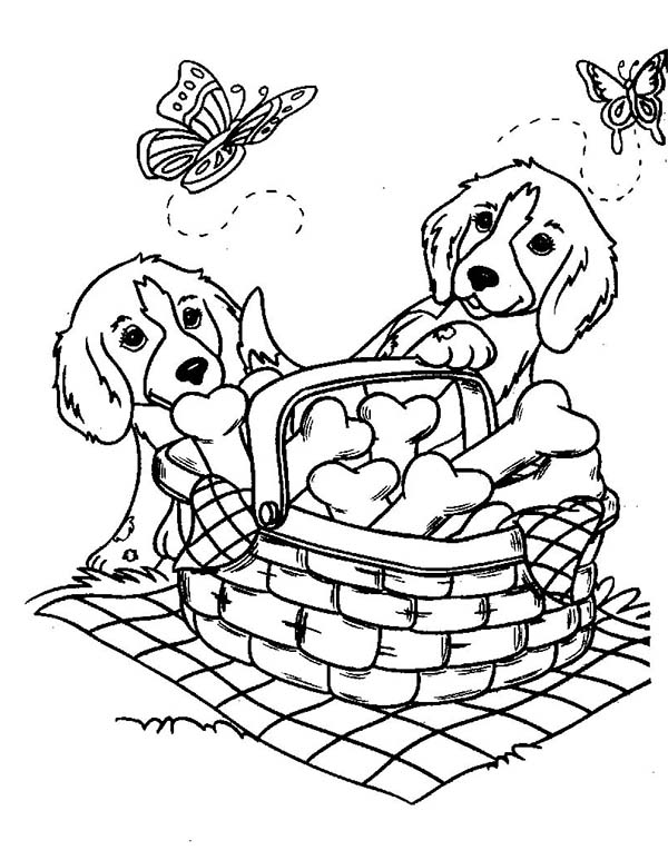dog coloring pages for kids print them online for free