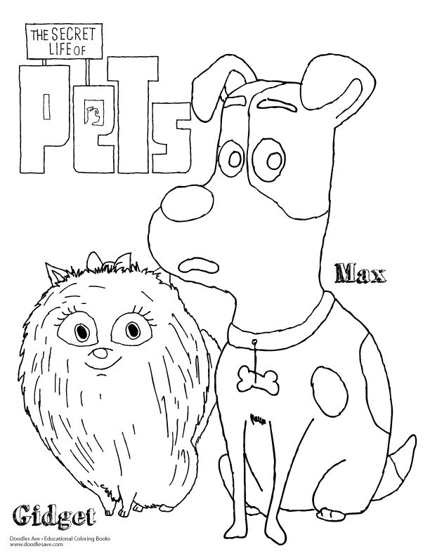 doodles ave secret lives of petsmax gidget secret life of