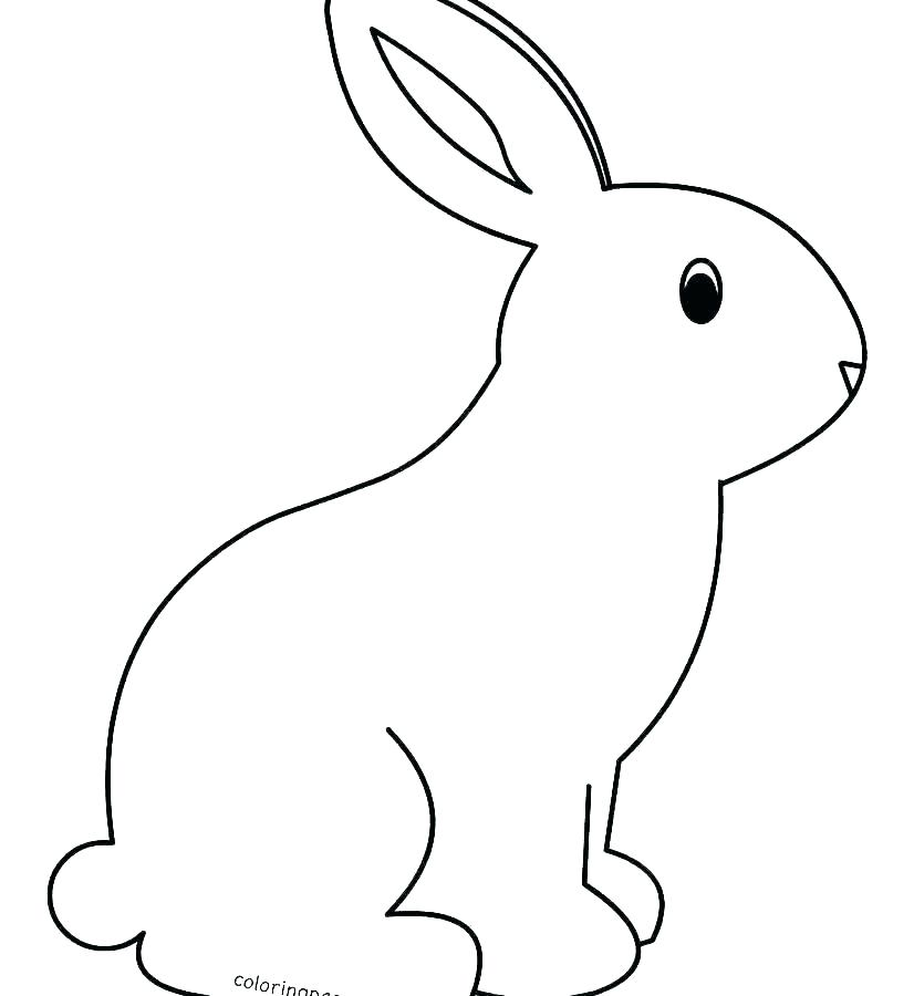 easter bunnies coloring pages lawyersforcaraccidents