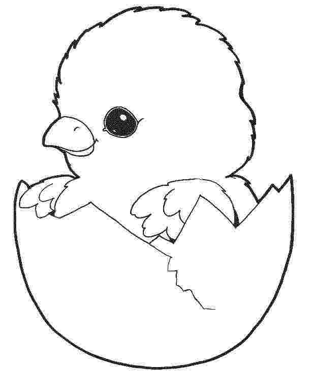 easter chick coloring pages printable cute easter chick