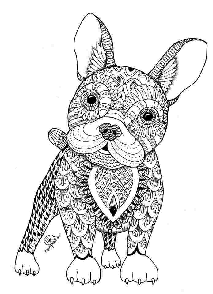 easy animal coloring pages for adults simple zentangle