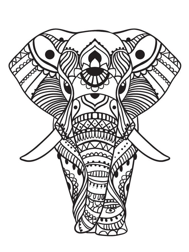 elephant coloring pages for adults best coloring pages for
