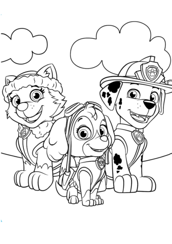 everest marshall and skye coloring page free printable
